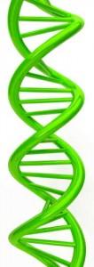 Генетический дефект как причина медикаментозного осложнения